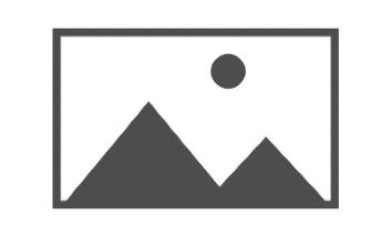 logo no image placeholder 4